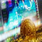 비트코인,투자,사태,상담,자산가,변동성