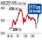 비트코인,가상화폐,수준,미국,시장,가격