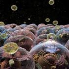 엑소좀,태아,기술,이번,연구,조산,치료제,활용,일리아스