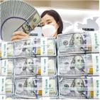 달러,미국,환율,부양책,경기,시행,금리