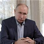 푸틴,러시아,시위,나발,영상물,주장