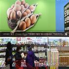 달걀,가공품,수입,정부
