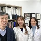 미토콘드리아,조절,교수,세포노화,연구