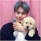 박은석,반려동물,강아지,소속사,배우,파양,사실,고양이