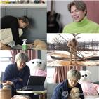박은석,잘못,의혹
