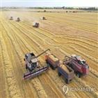 러시아,수출,관세,곡물,조치