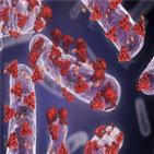 백신,박테리아,라파스