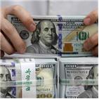 달러,환율,국내,지난해,강세,코로나19,원화