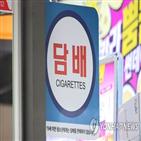 담배,전년,판매량,지난해