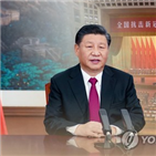 중국,미국,한국,보고서,대중,동맹,저자,위해,전략적,인도