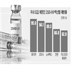 백신,이상,고령자,효과,검증자문단,결과,투여