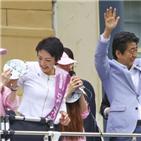참의원,가와이,의원,선거,자민당