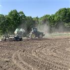 곡물,기업,국내,해외,옥수수,진출