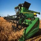 가격,국내,국제곡물,상승,곡물,업계,농식품부,지난해