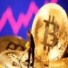 비트코인,투자,결제,테슬라,가상자산,미국,암호화폐,자산,펀드,달러