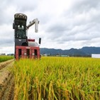 정부,생산량,지난해,쌀값,원인,재배면적,예산,사업