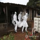 에볼라,보건,코로나19,가디언,기니,유행,설명