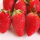 매출,딸기,전체,이마트