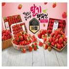 매출,딸기,겨울