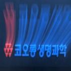코오롱생명과학,보사,허가,선고,혐의