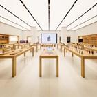 애플,여의도,국내,매장,LG전자,시장,제품,가로수길,스마트폰,애플스토어