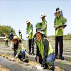 투자증권,지원,농촌,활동,마을공동체,사업,고객