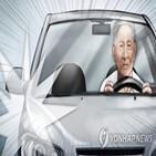 운전자,고령,조건부,운전면허,고령자,교통사고,도입,면허,사고,허용