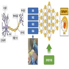 정보,인공지능,복잡계,사람,소문,개별,전체,처리,뉴런