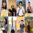 파인애플,대만,중국,사진,수입,대만인,챌린지,민진당,작년