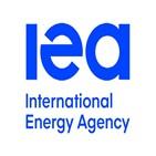 주장,탄소,에너지,바이오에너지,나무,화석연료,활용,대해,일부,바이오매스