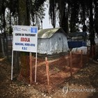 에볼라,미국,바이러스,기니,방문객,콩고