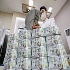 외환보유액,달러,증가