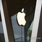 애플,개발업체