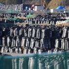 후쿠시마,원전,사고,지역,일본,수준,원래,대지진