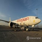 백신,에티오피아,항공,수송,항공기,서비스