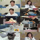 이태성,김지민,카오,몬드,반려견,나리,느낌