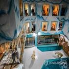 북극곰,호텔,중국,동물