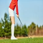 골프,브랜드,매출,골프웨어,지난해,증가