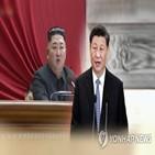 중국,형세,주석,발전,북한