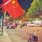 중국,분노청년,소분홍,홍위병,애국주의,국가,저자,교육,민족