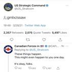 전략사령부,댓글