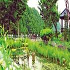 정원,천상,대청호,바위,교회,이름,옥천,벚꽃,정도,호수