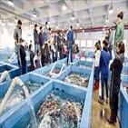 꽃게,인천,어획량,해역,조업