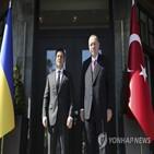 우크라이나,터키,러시아,긴장,대통령,돈바스,정상