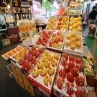 지난해,사과,과일,이달,도매가격,재배면적