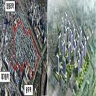 개발,역세권,인근,후보지,강북구,동대문구,지역,규모,청량리역