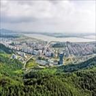 승격,인구,홍성,지역,도시,지방자치법