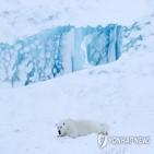 러시아,기후변화,영구동토층,기상청,기온,북극해,항로