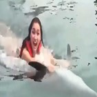 돌고래,인도네시아,마리,동물,수영,학대,서커스