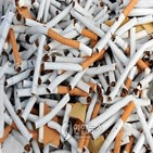 담배,뉴질랜드,국가,금연,가게